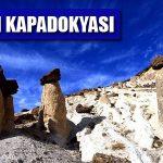 Vanadokya – Van Peri Bacaları