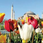 İstanbul İklimi