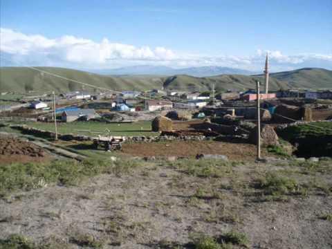 Selim Kars Nerede, Hangi Şehirde