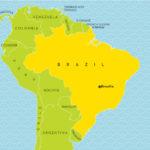 Brazil Neresi, Hangi Ülke, Türkçesi, İngilizcesi Ne Demek